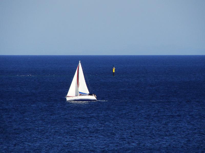 Yacht expert witness